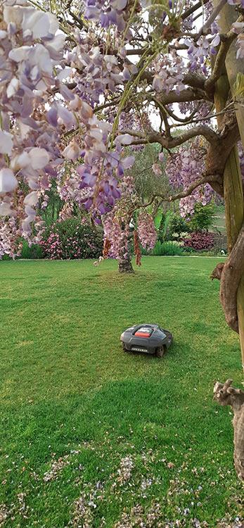 cote-et-jardins-paysagiste-pornic-robot-tondeuse